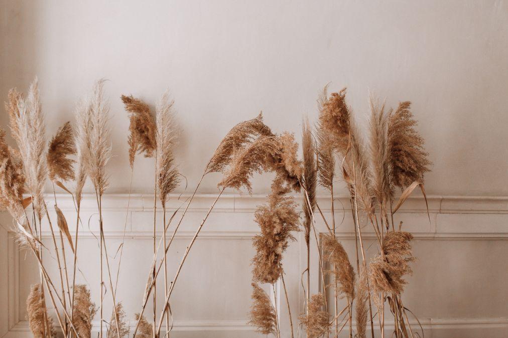 Dekoracja domu na wesele z suchych traw